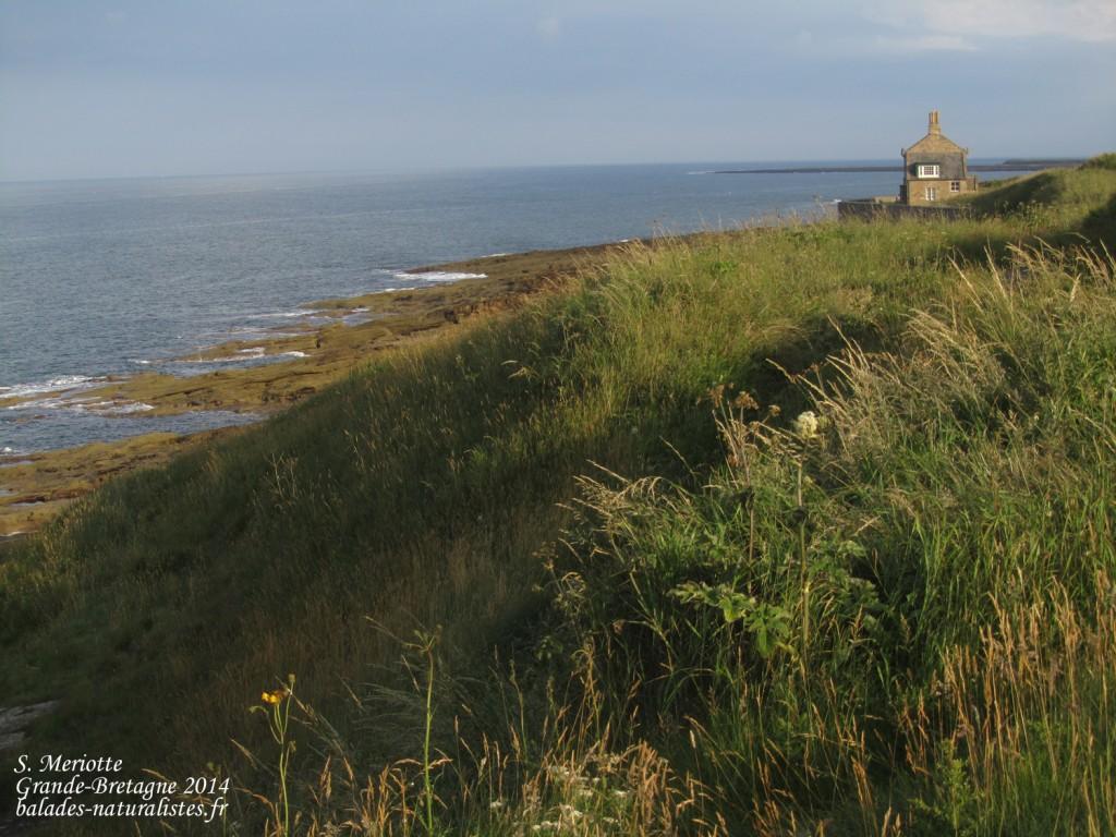 Northumberland - 11/07/2014