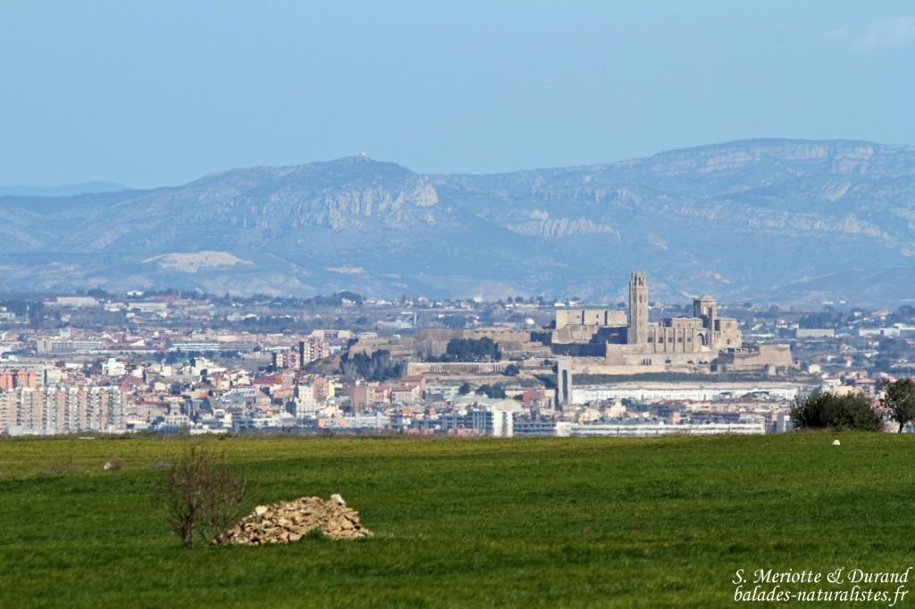 Catalogne : région de Lérida