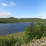 Les rives de la rivière Tana