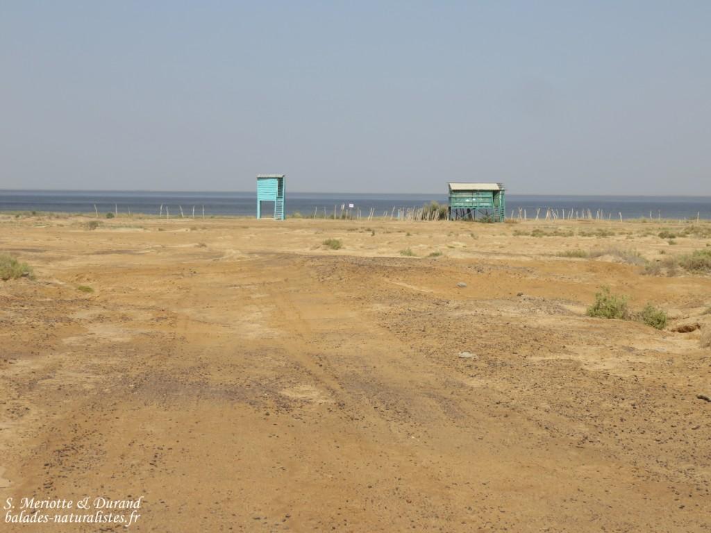 Observatoires près du grand lac, Djoudj