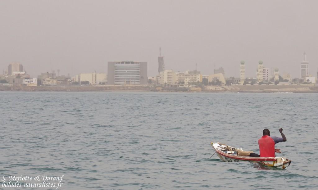 Pêcheur à Dakar