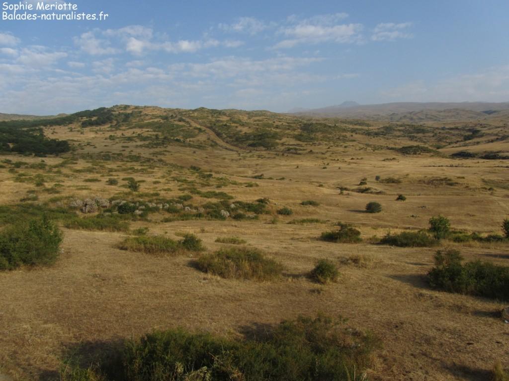 Paysages sur les pentes de l'Aragats