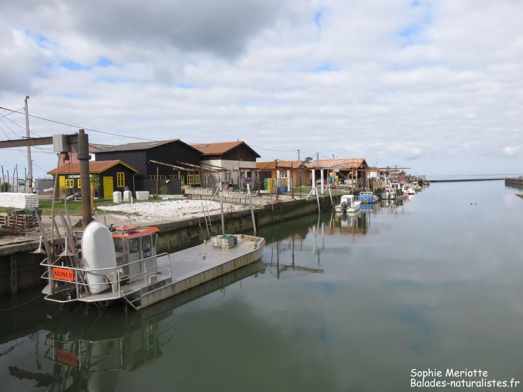Port de Larros dans le Bassin d'Arcachon