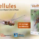 Atlas des libellules de Provence-Alpes-Côte-d'Azur