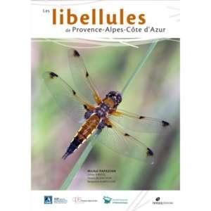 les-libellules-de-provence-alpes-côte-azur