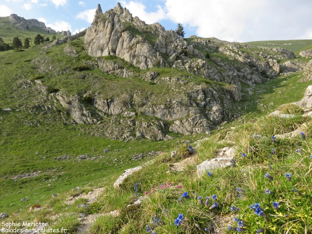Chemin vers le col de Jajène