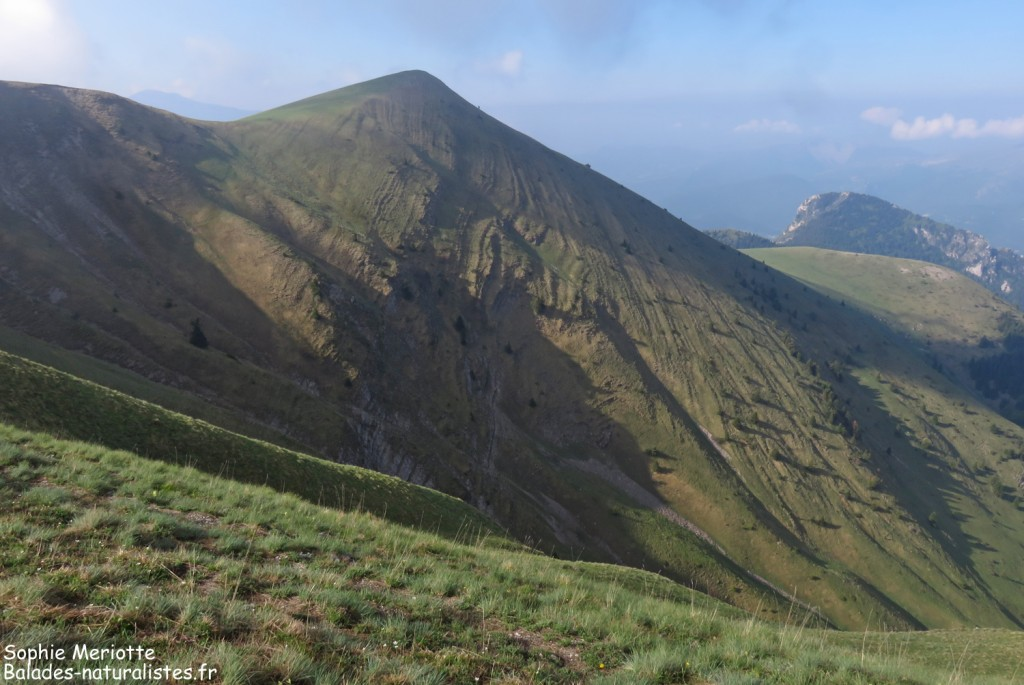 Crêtes entre le col de Jajène et Pointe Feuillette