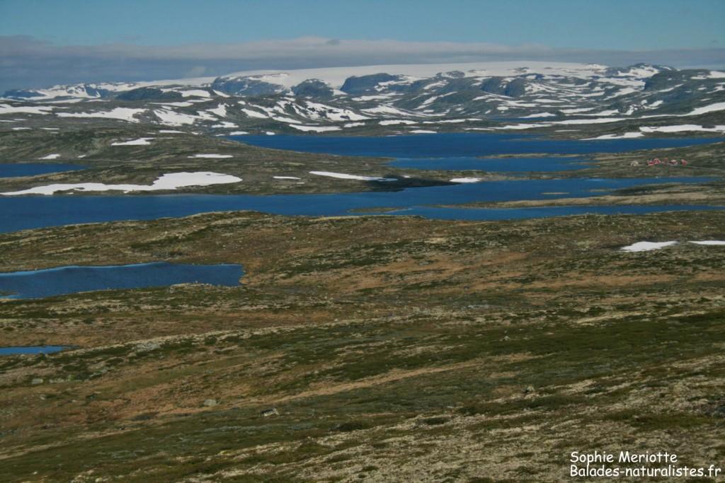 Parc national de l'Hardangervidda