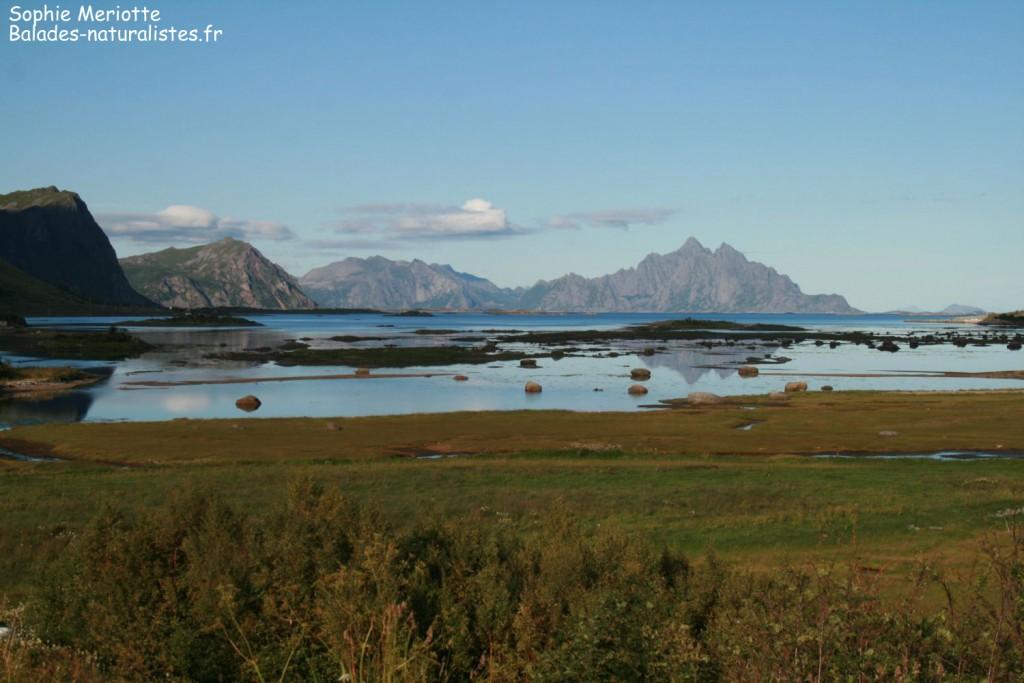 Norvège : d'Oslo aux Lofoten août 2012
