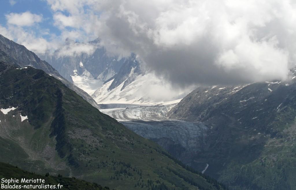 Glacier de l'Argentière vu depuis la montagne de Loriaz