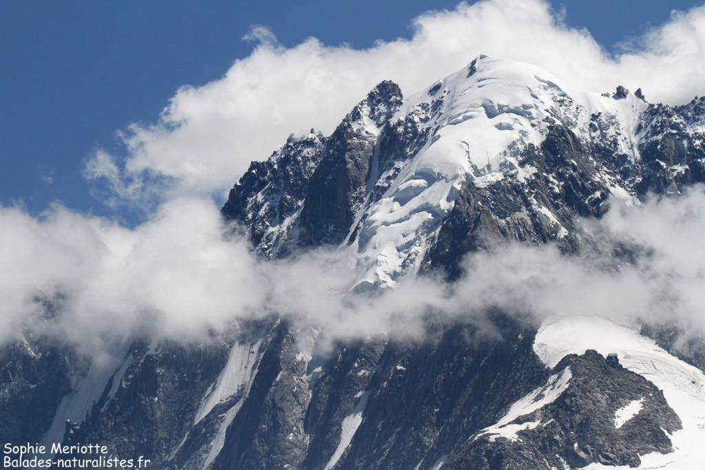 Massif du Mont blanc depuis la montagne de Loriaz