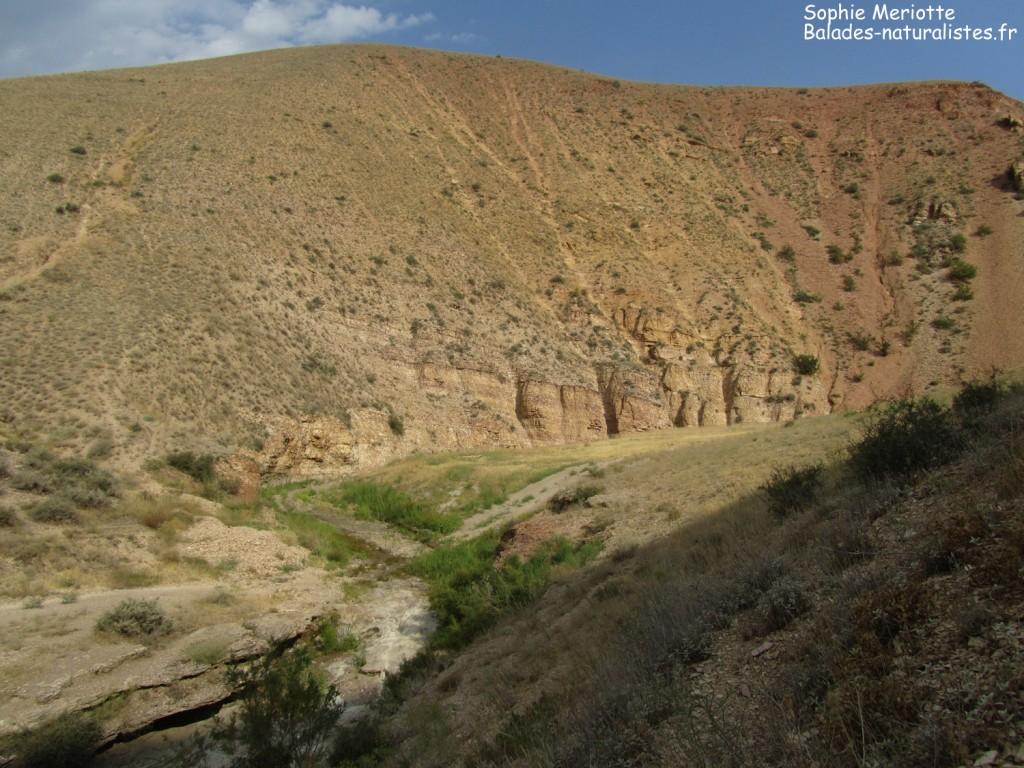 Le Wadi sec de Vedi