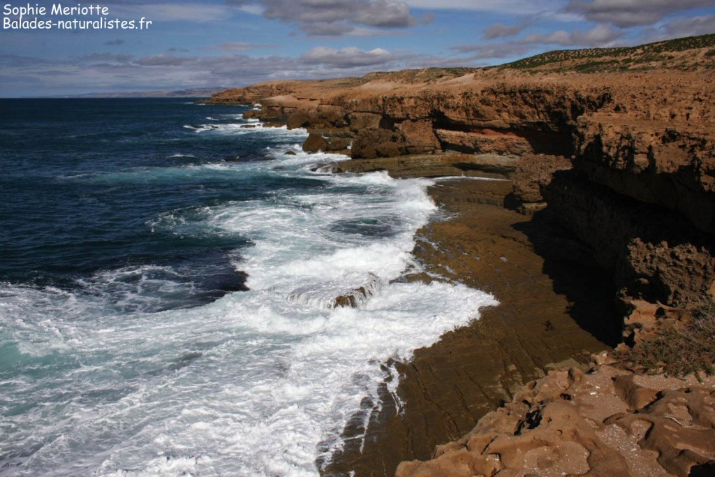 Route pour Agadir