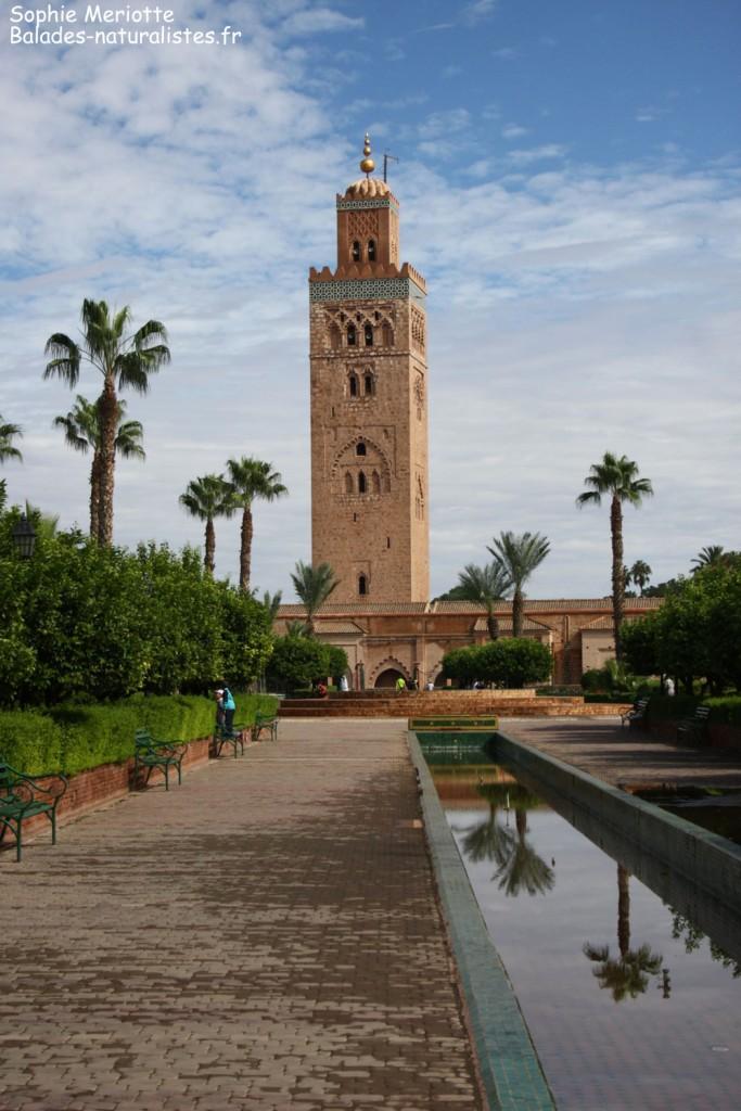 Marrakech, La Koutoubia