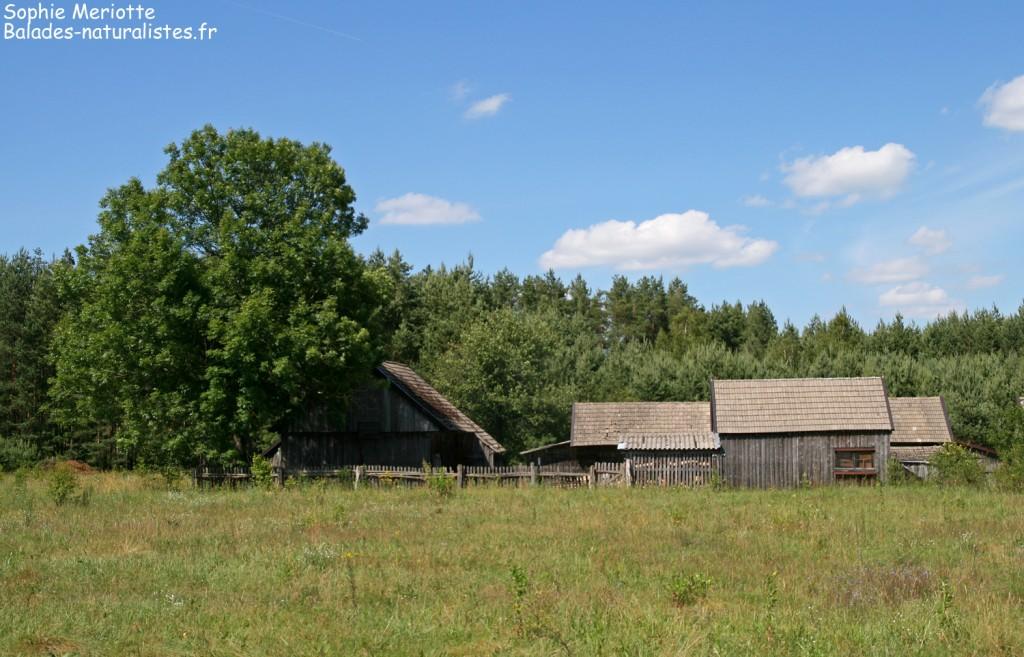 Village près du lac de Siemianowka