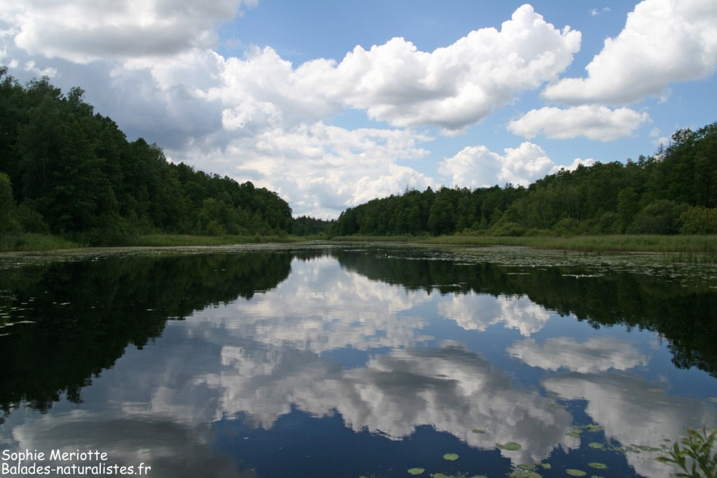 Lac de Topilo