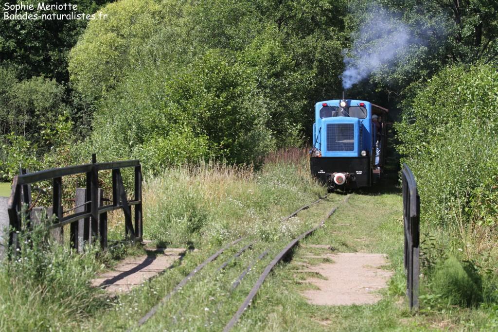Train près du Lac de Topilo
