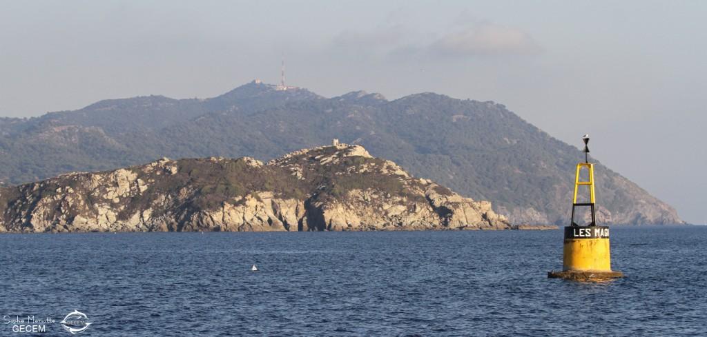 Retour dans la baie de Sanary avec vue sur l'île des Embiez et le Cap Sicié