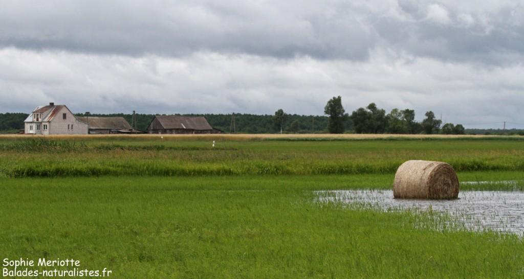 La piste de Dolistowo sous la pluie