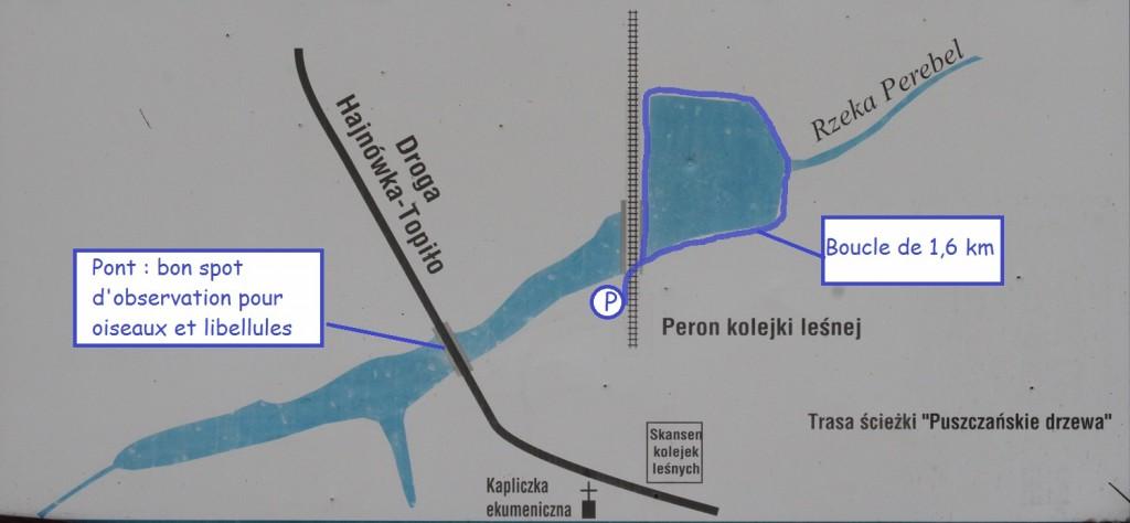 Plan de la balade autour du lac de Topilo