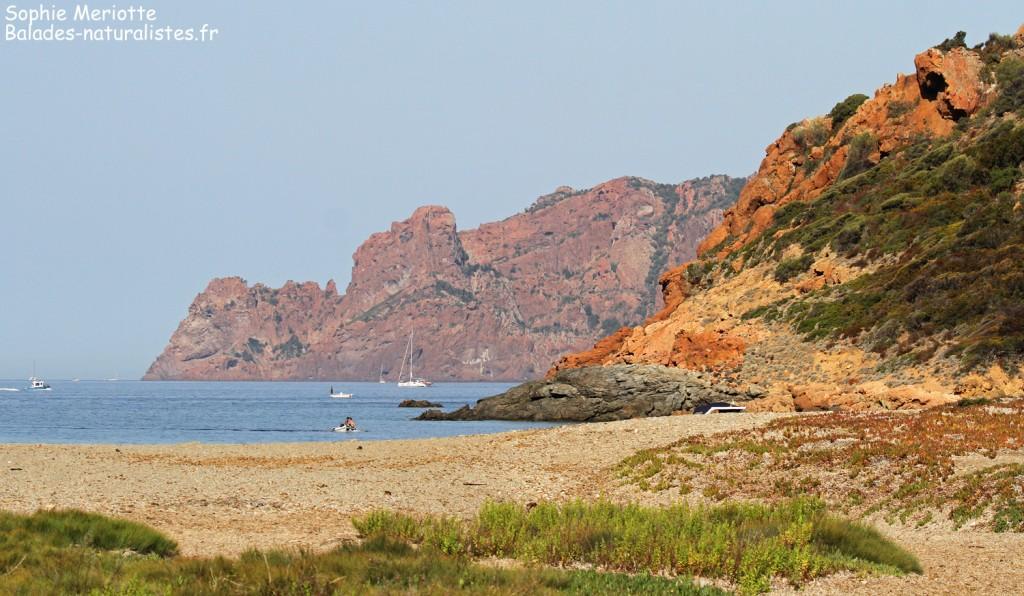Rando pour Girolata, la plage de Tuara