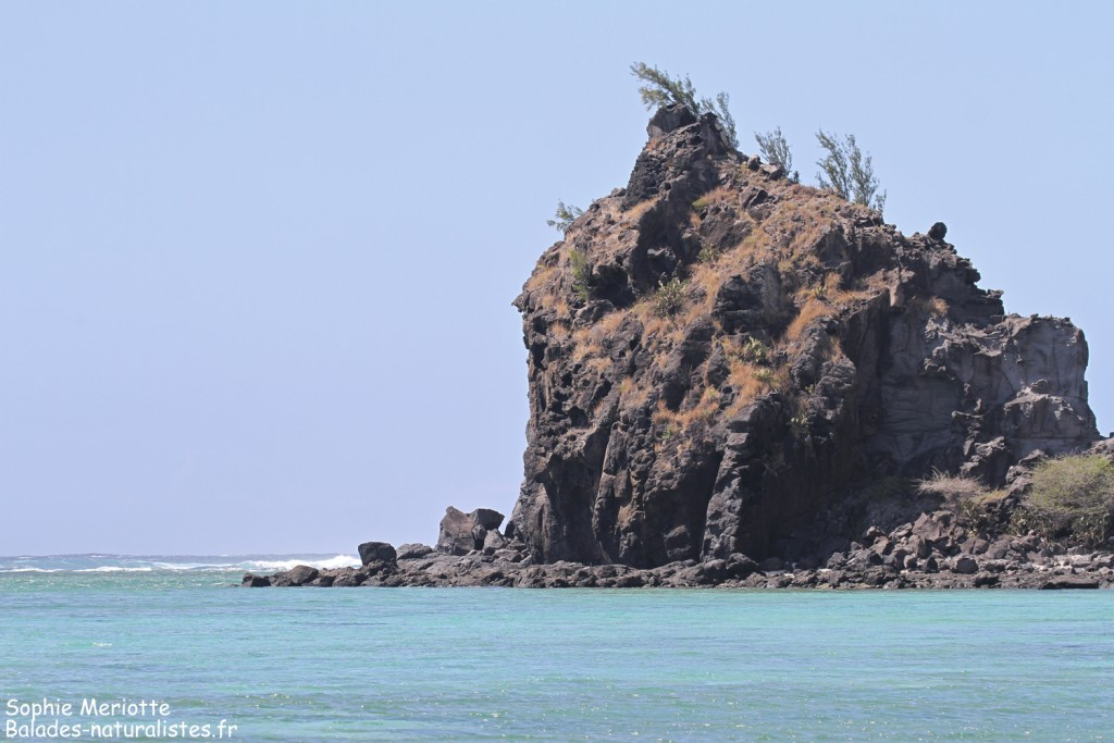 Falaises de basalte de Rivière Banane