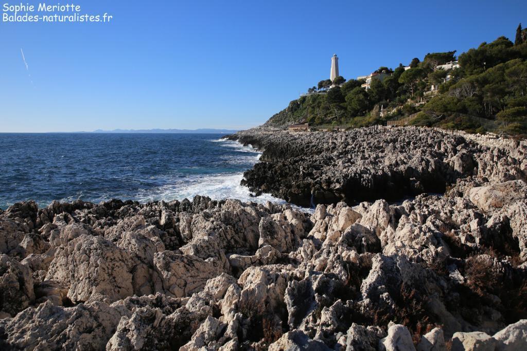 Sentier littoral de Saint-Jean-Cap-Ferrat