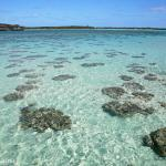 Ouvea, l'île la plus proche du paradis