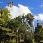 Sydney : jardins urbains
