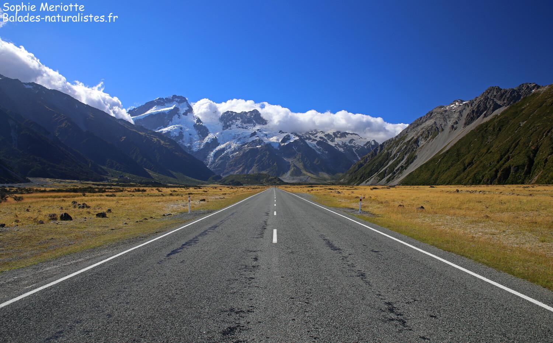 Road trip en Nouvelle-Zélande Journal de bord