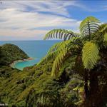 A la découverte du parc national d'Abel Tasman