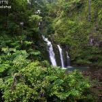 Maui, paradis tropical